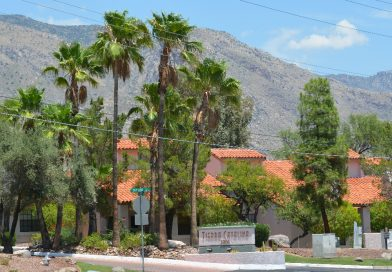 Homes for sale in Tierra Catalina Condominiums in Tucson, Arizona
